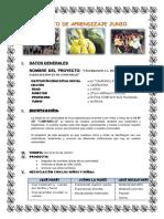 PROYECTO DE JUNIO.docx