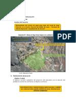DIAGNOSTICO- MEJORAMIENTO DE CANAL DE RIEGO.docx
