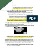 Balotario Gerencia2017-01.pdf