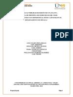 ARTICULO IEEE (1).docx