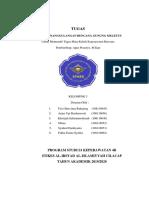 SISTEM_PENANGGULANGAN_GUNUNG_MELETUS[1].docx