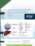 mediadores de la inflamacion.pptx