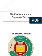 EM Environment and corporate culture.pptx