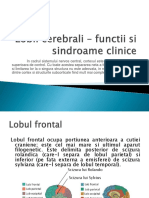 Lobii cerebrali – functii si sindroame clinice.pptx