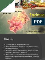 Enzimas - Bioquimica Nutricional Avanzada