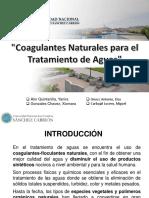 Coagulantes Naturales.pdf