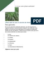 Zacate de limón y su uso como planta medicinal.doc