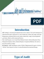 HSE Auditing Procedure