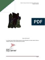 Unidad 2 - SQL Server