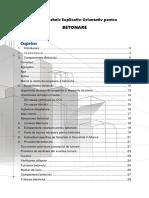 Manual-Tehnic-Explicativ-Orientativ-pentru-Betonare.docx