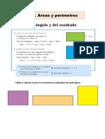 Tema 13. Áreas y perímetros.pdf