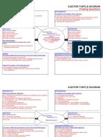 Turtle Diagram for Audit.xls