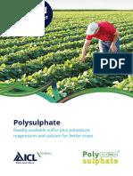 Polysulphate Booklet Usa