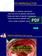 APARATO REPRODUCTOR.pps