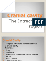 cranial cavity 1.pdf