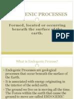 ENDOGENOUS-process.pptx