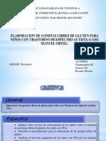 Presentación1, Proyecto. 1tesis