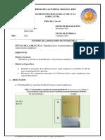 Informe-Idenficación-Alcaloides.docx