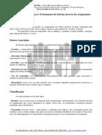 acupunturaEstrias.pdf