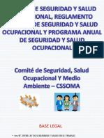 COMITÉ DE SSO. RISSO.  PASSO.pdf