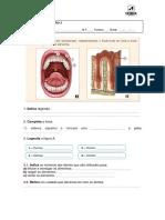 aencsi6_fc_digestivo.docx