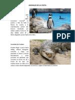 ANIMALES DE LA COSTA SIERRA SELVA.docx