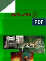 Recillas Castañeda_Jaguar para mayas.ppt