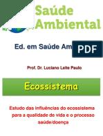 2ª Aula Ecossistema Luciano Leite
