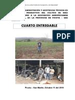 INFORME MAD SET  2019 - CUARTO ENTREGABLE (JUBER).doc