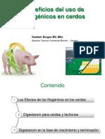 BENEFICIOS DEL USO DE FITOGÉNICOS EN CERDOS VLADIMIR BORGES .pdf