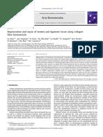 Regeneration and repair of tendon and ligament tissue using collagen fibre biomaterials