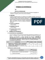1-TDR-CONCRETO PRE MEZCLADO-21-12-2018 corregido.docx