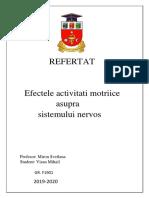 Efectele Activitatii Motrice Asupra Sistemului Nervos