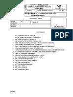 BALOTARIO 20 PREGUNTAS GEO MINERA.docx