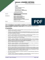 Modelo de Informe de Obs 02