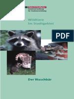 waschbaer.pdf