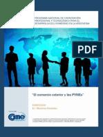 37_Comercio_exterior_U0.pdf