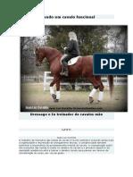Criando um cavalo funcional.pdf