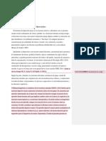 Marco teórico observaciones.docx