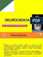 1. Neuropsicologiadel Aprendizaje.ppt