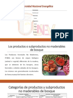 DIAPOSITIVA los productos no maderables Guerda.pptx