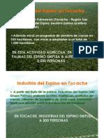 Palmas Del Espino en Tocache