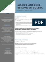 CV Marco.pdf