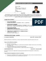 FOL Formato CV