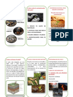 Cómo evitar la contaminación del suelo.pdf