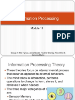 informationprocessing-101212233831-phpapp02