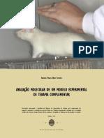 AVALIAÇÃO MOLECULAR DE UM MODELO EXPERIMENTAL DE TERAPIA COMPLEMENTAR_Antonia ferreira