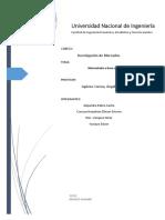 Informe Final investigación de mercados.docx