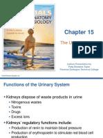 Ch 15 Excretory-system