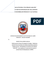 ESTUDIO DE ASEGURAMIENTO DE FLUJO PARA EL CAMPO NOROESTE – BLOQUE MAMORÉ.docx